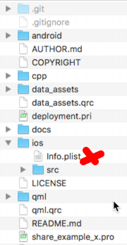 02_info_plist_in_project
