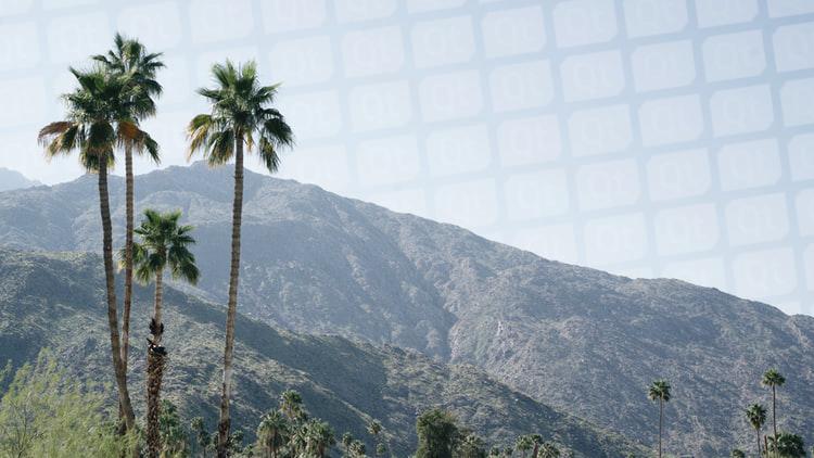 Palm Springs 1-2